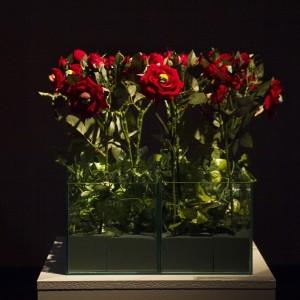 Life Ain't Rose Garden, installation, 2017